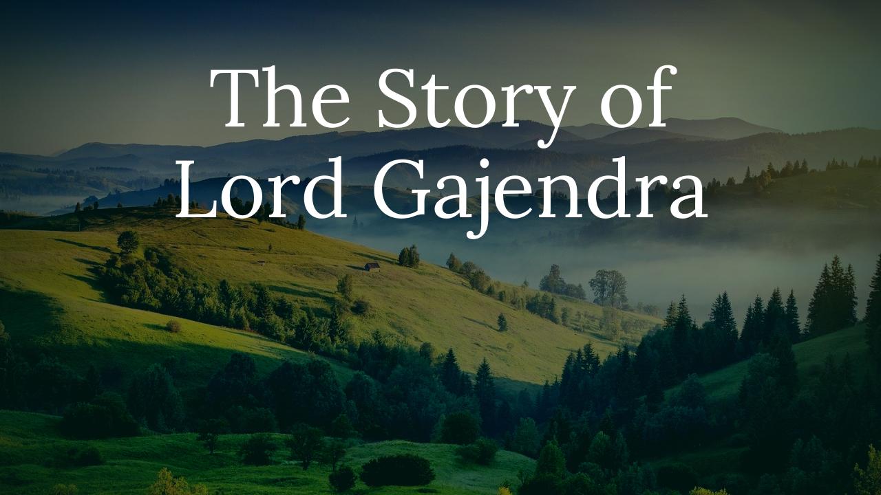 Lord Gajendra